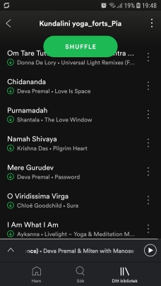 Screenshot_20190205-194807_Spotify